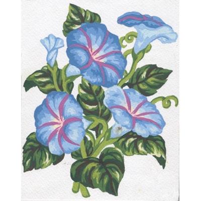 Grafitec Printed Canvas 3.038