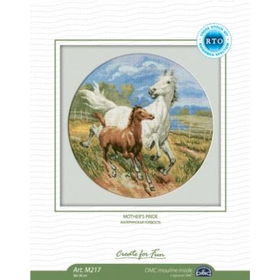 RTO Cross Stitch Kit M217